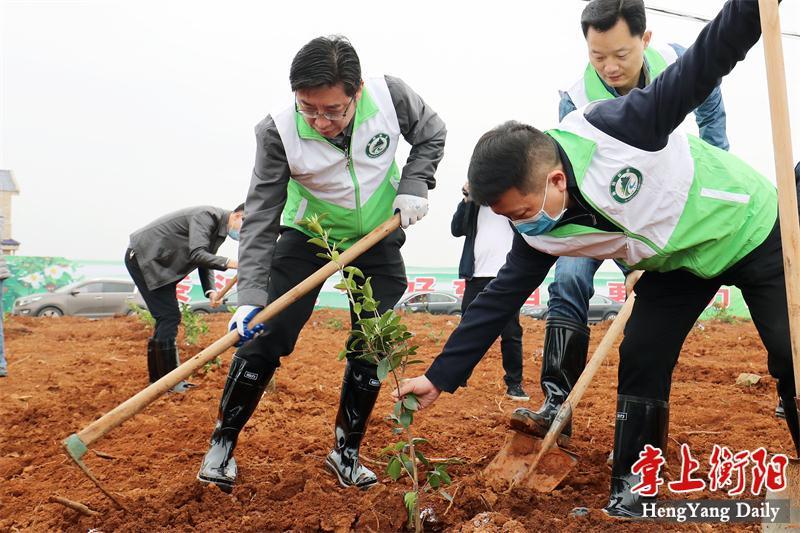 """邓群策、朱健等市领导参加植树活动 种下""""致富树"""""""